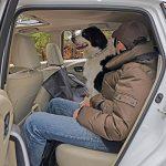 Poppypet Protège Banquette arrière , Couverture Banquette Arrière Nylon pour Chiens , Housse de protection de banquette arrière imperméable de type banc pour animaux domestiques de la marque Poppypet image 5 produit